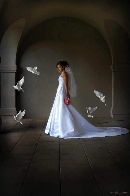 Beautiful Bride Photography with Wedding Doves