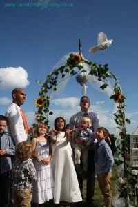 Wedding Doves Wisconsin - and the World. This photo of a wedding release in the United Kingdom