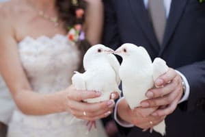 White Dove Release - Bride and Groom Doves